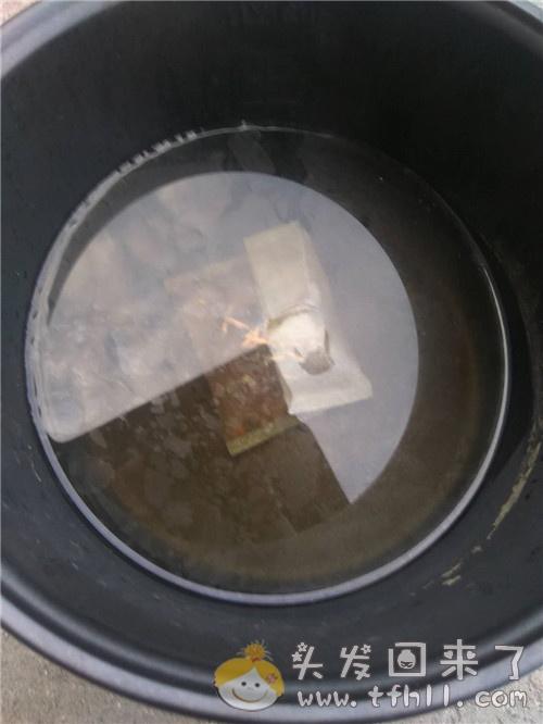 个人正在使用的治脂溢性脱发的中药(外用篇)图片 No.4
