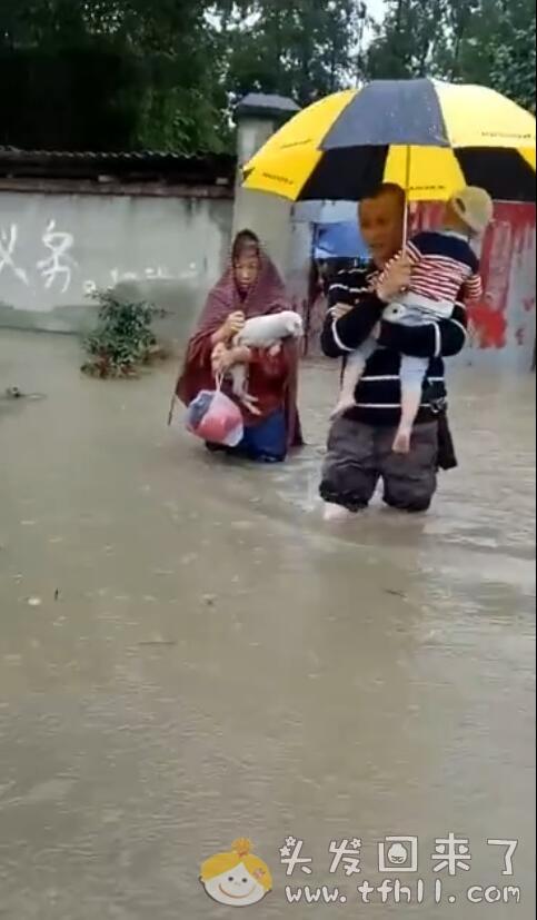 最近雨水比较多,成都很多地方都被淹了图片 No.1