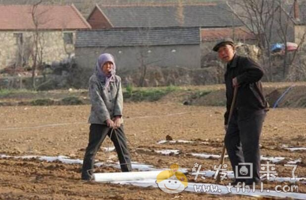 说一说村上一户人家两位老人的闹心事图片